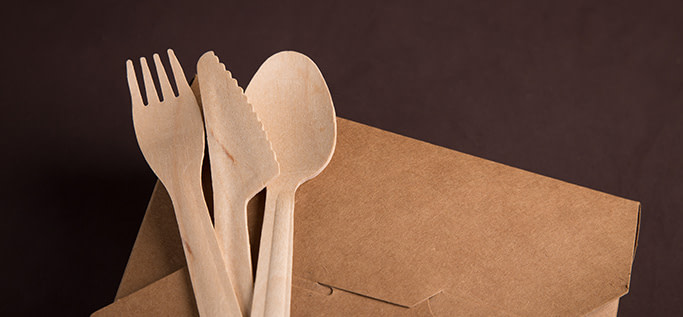 Sustainability food container and wood cutlery